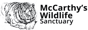 mccarthys wildlife sanctuary