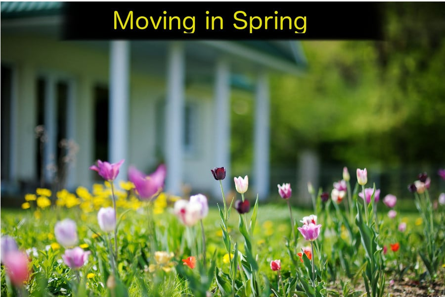 Moving in Spring with Top Notch