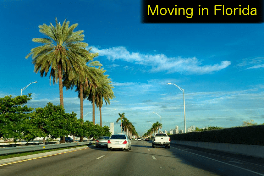 Moving in Florida